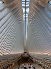World Trade Center Interior II (Neil Noland) Tags: groundzero worldtradecenter freedomtower lowermanhattan manhattan newyorkcity nyc bigapple newyork