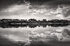 lake and clouds (bożenabożena) Tags: landscape landscapebw lake clouds sky trees reflection summer krajobraz krajobrazbw monochrome jezioro niebo chmury drzewa odbicie poland