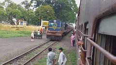 6636 Izzatnagar Ydm4 emerging from greenery   #matera #railwaystation #metergauge #chotiline #uttarpradesh #northeasternrailway #lucknowdivision #6636 #izzatnagar #ydm4 #hauling #52264 #nepalganjroad #bahraich #mg #passenger #arriving  #beautifulweather # (karanyadav6) Tags: nepalganjroad ydm4 arriving bahraich trees karanwdgyadav metergauge beautifulweather railwaystation uttarpradesh mg railphotography izzatnagar railfanningindia chotiline hauling green railroad discoveruttarpradeshwithus uttarpradeshnahidekhatohkuchnahidekha lucknowdivision 52264 greenery passenger matera northeasternrailway 6636 uttarpradeshtourism