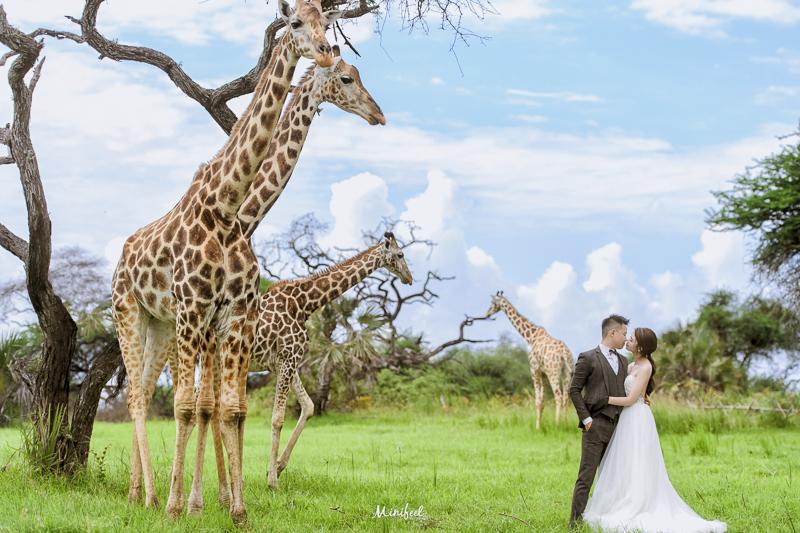 Cheri婚紗,Kenya WEDDING,海外婚紗,Kenya,新祕Kristi,肯亞婚紗,婚攝,DSC_4583-1