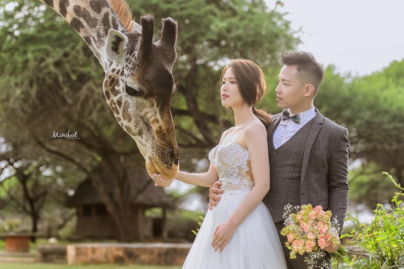 Cheri婚紗,Kenya WEDDING,海外婚紗,Kenya,新祕Kristi,肯亞婚紗,婚攝,DSC_4412-1
