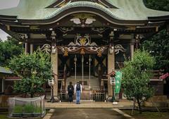 Suwa Shinto Shrine, Okubo, Tokyo (Senkawa Scott) Tags: 神社 諏訪神社 大久保 東京 参拝 worship shinto japan shrine sacred respect gods 神々 神