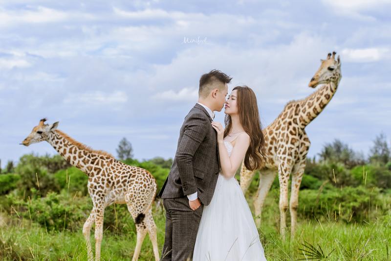 Cheri婚紗,Kenya WEDDING,海外婚紗,Kenya,新祕Kristi,肯亞婚紗,婚攝,DSC_4275-1