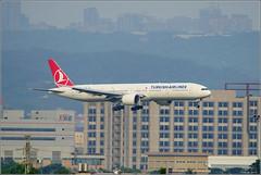Turkish Airlines / TC-JJS / Taiwan Taoyuan International Airport (travelsolio) Tags: turkishairlines 土耳其航空 桃園機場 tcjjs boeing7773f2er boeing777300er taiwantaoyuaninternationalairport taiwan tperctp