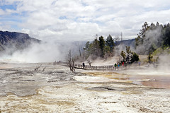 Mammoth Hot Springs - Yellowstone National Park, WY (SomePhotosTakenByMe) Tags: mammothhotsprings mammoth wyoming yellowstone nationalpark yellowstonenationalpark outdoor trail hike wanderung usa america amerika unitedstates natur nature