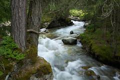 Ötztal - Tirol (Ernst_P.) Tags: aut österreich ötztal stuibenfall tirol umhausen wasser bach sigma art 24105mm f40 water agua bosque forest austria autriche tyrol