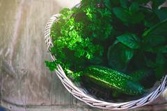 Erntekorb (Elisabeth Lier) Tags: canon eos 600d harvest ernte garten sommer gurken kräuter korb herbs sonnenschein sunlight garden summer cucumber eat essen kochen