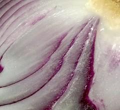 Pattern of an Onion (Zohaib Usman (2M+ Thanks)) Tags: macromondays patternsinnature macroandcloseup macros