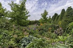 The Stumpery (gardenpower) Tags: england gardens stumpery arundelcastle uk