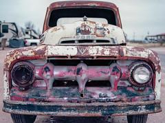 1951 (ArtHouseFilm81) Tags: ford 1951 truck nikon f6 film filmisnotdead processedfilm develop interesting texas winter faded rust oneheadlight style photography professional pro 35mmfilm