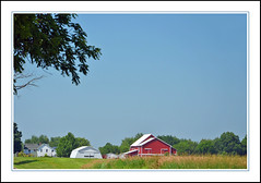 An Indiana Amish Farm With White and Red Barns (sjb4photos) Tags: indiana shipshewana farm redbarn