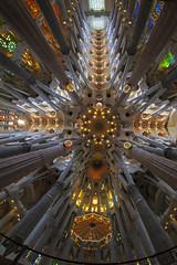 "Sagrada Familia (""Marco50"" Marco Mattei) Tags: sagradafamilia cattedrale fisheye canonfisheye canonfisheye815 barcellona ngc antonigaudi architettura architectur asbeautifulasyouwant"