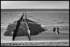 North sea textures (gusmartinie) Tags: wind sand northsea wooden nature people pole sea structure texture ocean summer man beach maritime monochrome outdoors belgium woman europe sky flanders thenetherlands coast stones water