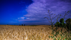 July (Andrzej Kocot) Tags: andrzejkocot art adventure landscape landscapes sky surreallandscape sunlight creative clouds colors countryside fineart photography poland polska olympus