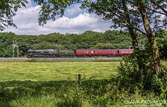 35018 | Slindon | 15th July '19 (Frank Richards Photography) Tags: 35018 british india line 5z35 1019 southall wcr carnforth steamtown slindon west coast main wcml staffordshire steam locomotive merchant navy nikon d7100 uk england heritage pacific green red mark1 coach 15th july 2019 monday ecs lightloco class britishindialine