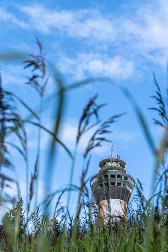 Puijon Torni näkymä pellolta