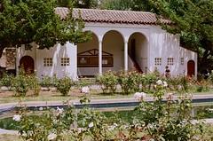 000670860027 (nautical2k) Tags: olympusom2n lomography400 film 35mm california oakland marcom rose garden