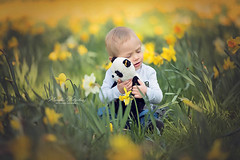 Thomas & Johannes (nicolewitschass) Tags: boy toddler brother brothers flowers easter green yellow child kid children childrenphotographer portrait professional cute smiling teddybear teddy bear panda smelling spring outdoor nature greens meadows familyportrait familyphotography nikon d750 germany stuttgart leonberg nicole witschass nicolewfotografie