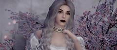 The White Queen (基里连科S) Tags: skyrim tesv enb
