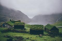 (freyavev) Tags: saksun faroeislands visitfaroeislands scandinavia moody atmosphere greenery greenroofs houses nature atlantic atlanticocean atmospheric vsco canon canon700d mikasniftyfifty