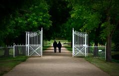 Walk in the Park (K&S-Fotografie) Tags: park spaziergang bäume trees weg gone tor eingang entrance whitegate wasser goal