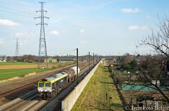 Captrain 6601 Leugenberg (TreinFoto België) Tags: 6601 captrain 60211 tessenderlo antwerpennoord leugenberg ekeren lijn 27a class 66 gm emd belgium belgië belgien belgique