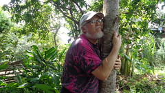 Treelovin' (John Godfrey Schellinger) Tags: tree ash cenizo refugioflorcherique forestgarden jardinforestal tall solid strong