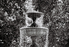 Park Fountain, 2019 (imagery.ts) Tags: 2019 olympus uk water fountain regents park london england still nature trees leaves pushedfilm pushed800 tefnon 70205mm lens