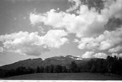 Norway (Berggren81) Tags: leica m4 sv blackwhite tmax400 analouge ishootfilm summilux35mm street semester