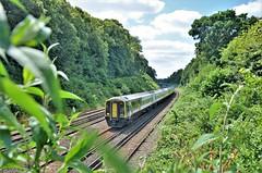 159018 (stavioni) Tags: class159 dmu diesel multiple unit rail train brel express sprinter swr swt south western railway west trains