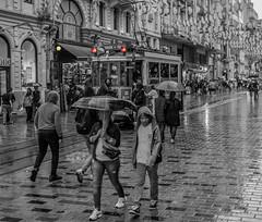Istiklal Street in the summer (osamahadba) Tags: turkey istanbul istiklal istiklalstreet street people rain raining tramvay old blackandwhite white black lights umbrellas shops
