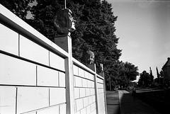 Heads (Berggren81) Tags: leica m4 sv blackwhite tmax400 analouge ishootfilm summilux35mm street semester