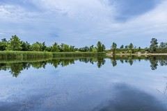 Reflections (Daniel Boca) Tags: water waterscape lake trees reflection reflections mirror nature naturephotography naturepics naturephotograph canon canoneos750d canoneurope clouds blue bluesky landscape