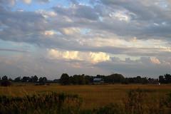 summer time farmers field (Wil James) Tags: sonyilca99m2 zeiss2470 zeisszassm summer clouds sunset kawarthalakesphotographer ontario farm canada sky fields barn