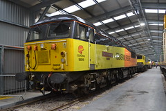 Colas Rail 56049 (Will Swain) Tags: crewe diesel depot all change open day 8th june 2019 cheshire north west south county train trains rail railway railways transport travel uk britain vehicle vehicles england english europe transportation station class colas 56049 56 049