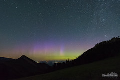 July Aurora (kevin-palmer) Tags: july summer night sky stars starry space astronomy astrophotography aurora auroraborealis northernlights geomagneticstorm colorful green purple clear dark bighornmountains bighornnationalforest wyoming nikond750 redgraderoad sigma14mmf18