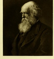 This image is taken from The record of the Royal Society of London (Medical Heritage Library, Inc.) Tags: royal society great britain wellcomelibrary ukmhl medicalheritagelibrary europeanlibraries date1912 idb24865230