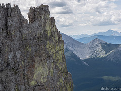 Lichen cliff (David R. Crowe) Tags: cliff colour energy landscape lichen light nature plant yellow calgary alberta canada