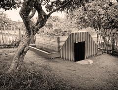 IMG_2454BW (bob_rmg) Tags: museum durham beamish 1950s air anderson raid shelter