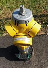 13 - Nancy - Borne incendie jaune (melina1965) Tags: grandest lorraine juillet july 2019 nancy panasonic lumix dmctz57 meurtheetmoselle jaune yellow