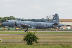 RCAF 140117 CP-140 EGDY 14/07/19 (_alphabravo) Tags: avgeek aviation aviationphotography airplane airport avporn airliner airline canon eos england planespotter planespotting photography plane planeporn sky window jet cloud aircraft yeovilton yeo yeoviltonairday rnasyeoviltion
