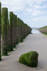 (BJSmit) Tags: zeeland zoutelande westkapelle strand eb lowtide