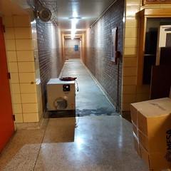 Ph2-completion-Floor-tile-mastic-asbestos-abatgement-Colorado-school-3 (Environmental Services) Tags: asbestos junction
