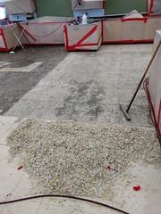 Ph1-progress-Floor-tile-mastic-asbestos-abatgement-2 (Environmental Services) Tags: asbestos junction