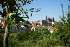 Prager Burg (Sascha Klauer) Tags: republic czech prague prag praha tschechien repubblica česká sonya7 sonyalpha7 ilce7 sonyilce7