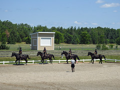 RCMP recruits (I believe) undergoing equestrian training at the Canadian Police College in Ottawa, Ontario (Ullysses) Tags: rcmp grc sergeantpcoté canadianpolicecollege rcmpmusicalride royalcanadianmountedpolice gendarmerieroyaleducanada ottawa ontario canada summer été training formation horses cheveau recruits