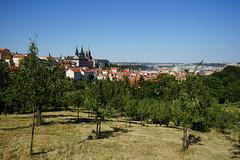 Apfelbaumplantage Prag (Sascha Klauer) Tags: republic czech prague prag praha tschechien repubblica česká sonyalpha7 sonya7 ilce7 sonyilce7