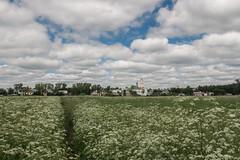 IMG_3705 (shadowtony) Tags: russia suzdal summer nature folklore суздаль лето троица июнь россия природа