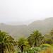 Rain over the Garajonay National Park on La Gomera, Spain