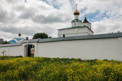IMG_3593 (shadowtony) Tags: russia suzdal summer nature folklore суздаль лето троица июнь россия природа